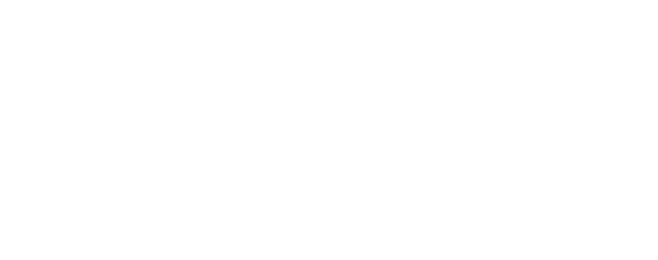 The Young Luxury Traveller